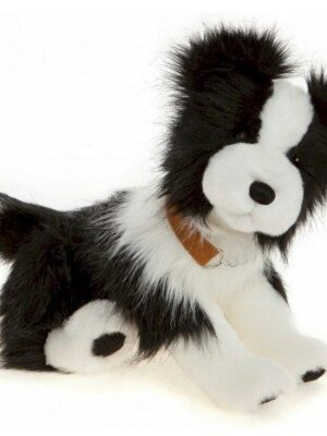 Silas Dog
