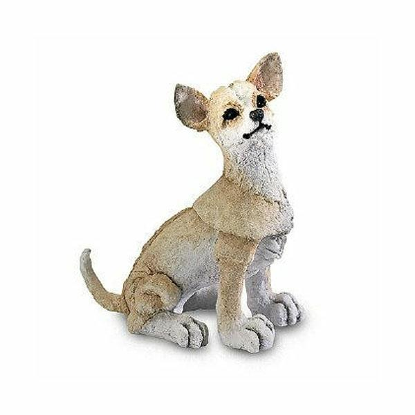 Chihuahua Mini by A Breed Apart