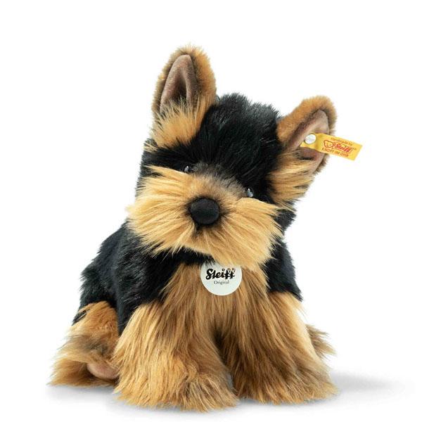 Herkules Yorkshire Terrier